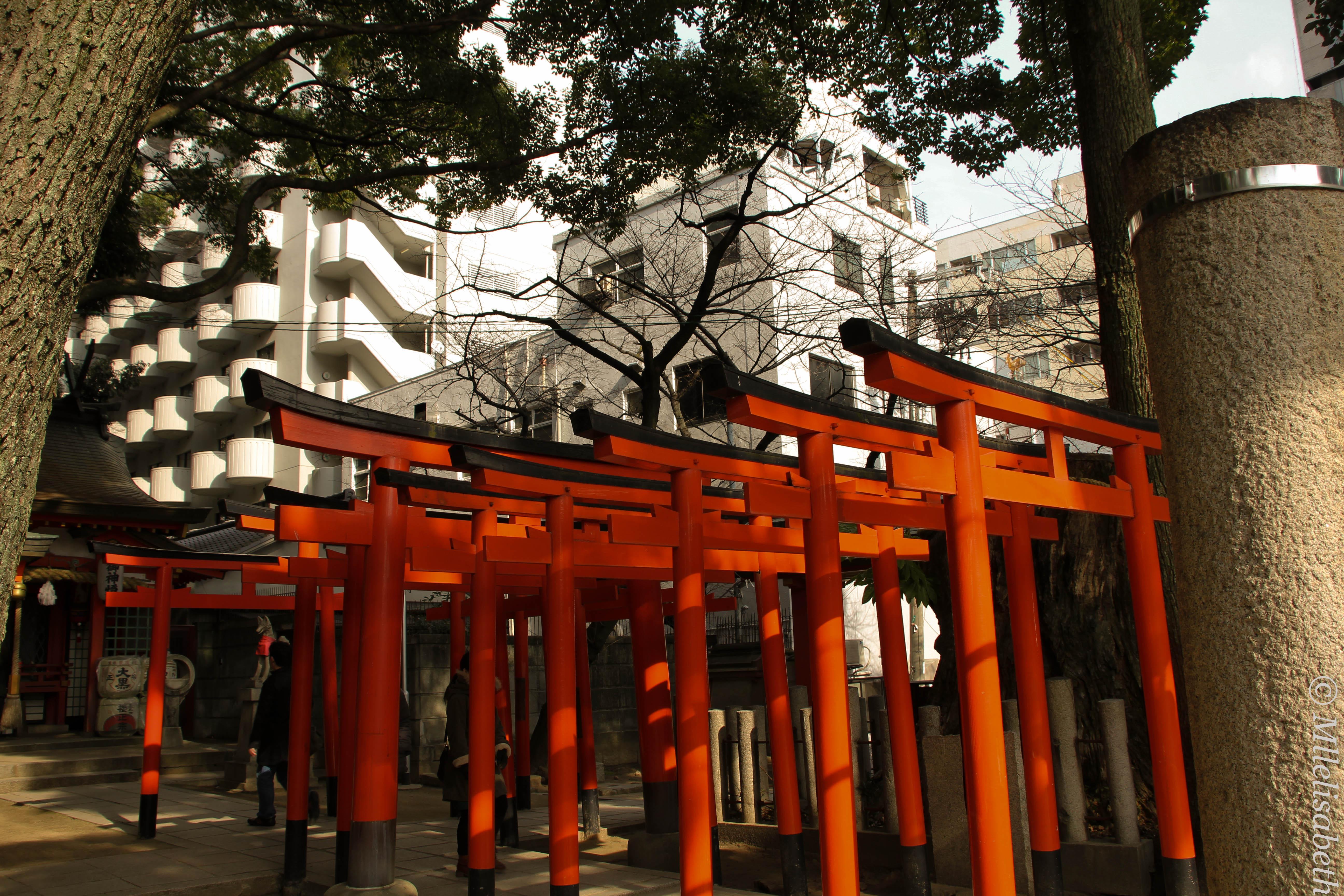 Kobe ~ 神戸