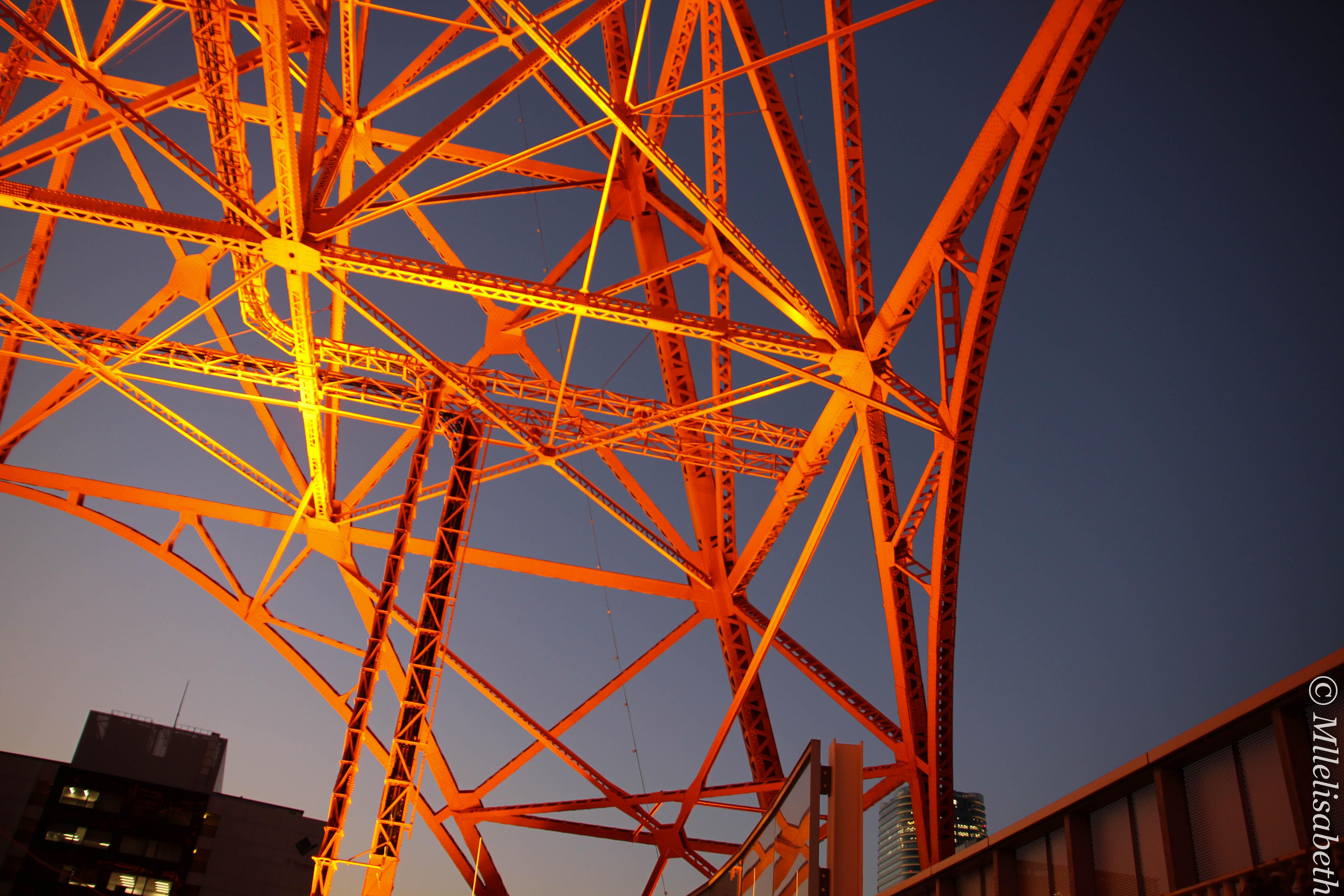 Tokyo Tower ~ 東京タワー