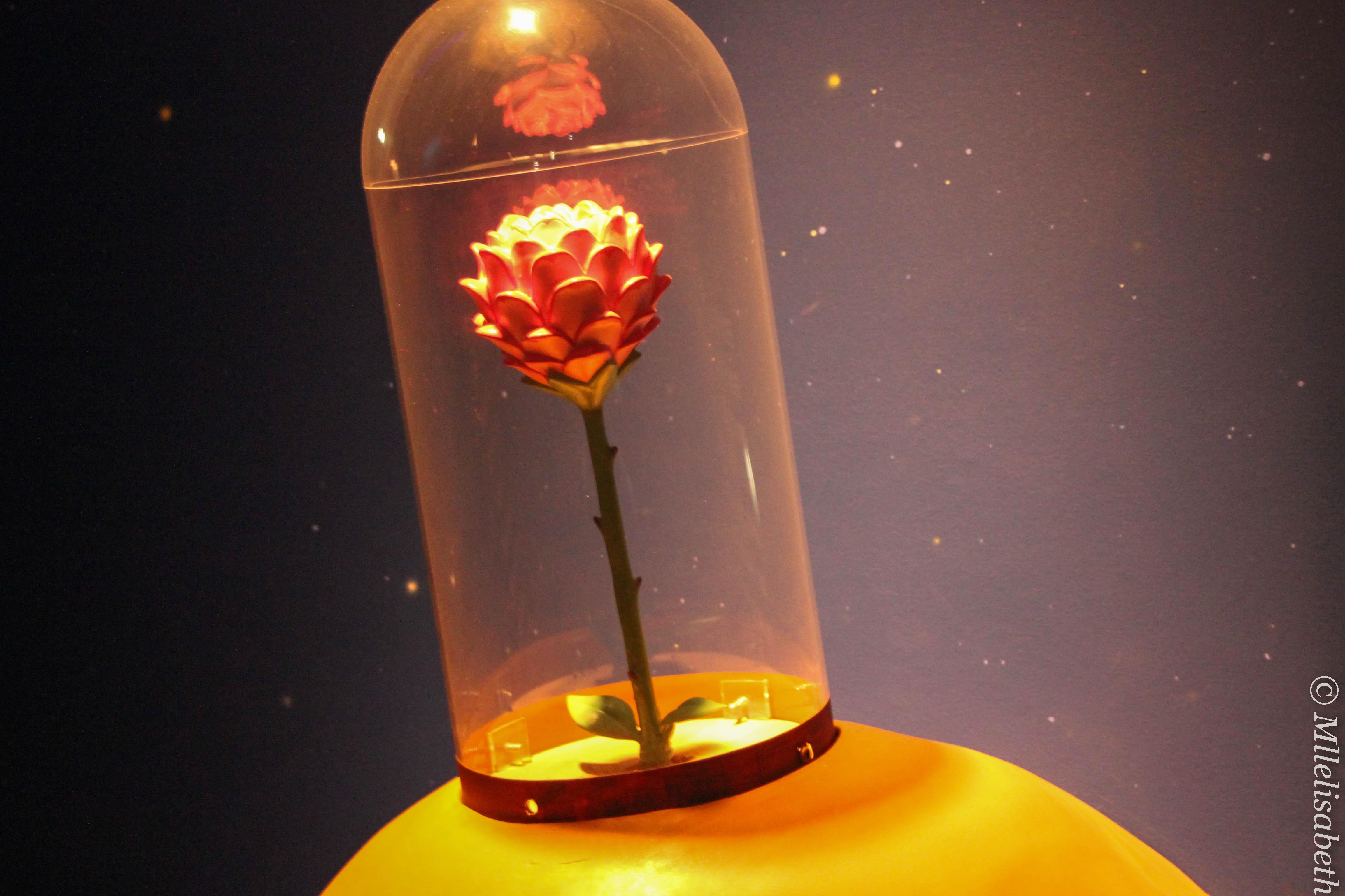 Le musée du Petit Prince, Hakone ~ 星の王子さま